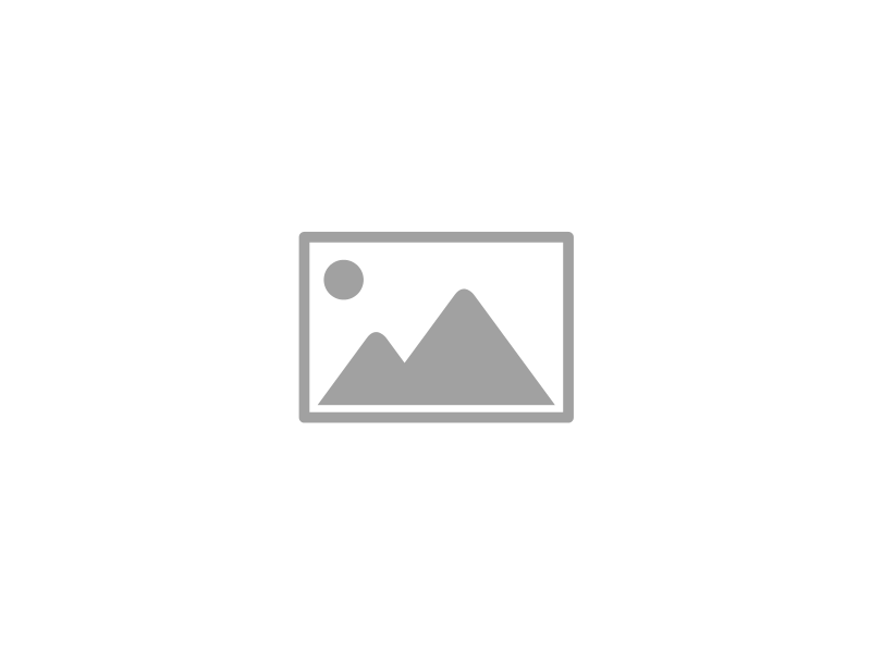 Cobi 3009. Small Army. Leopard I